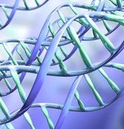 Новая музыка создается из ДНК