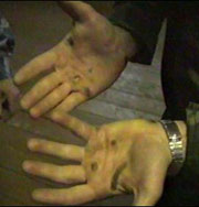 Привлекательность мужчины можно определить по длине пальцев