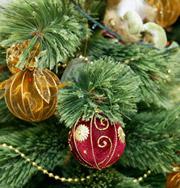 Что просят у Деда Мороза взрослые и дети
