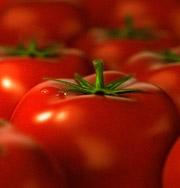 Самыми полезными признаны помидоры