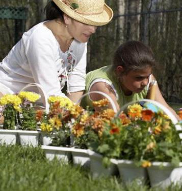 Садоводы рискуют заработать диабет