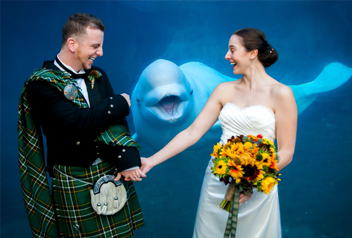 Свадебные фотографии в которых что-то не так. Фото