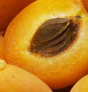 Оранжевая еда помогает худеть