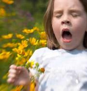 Аллергию будут лечить по-новому