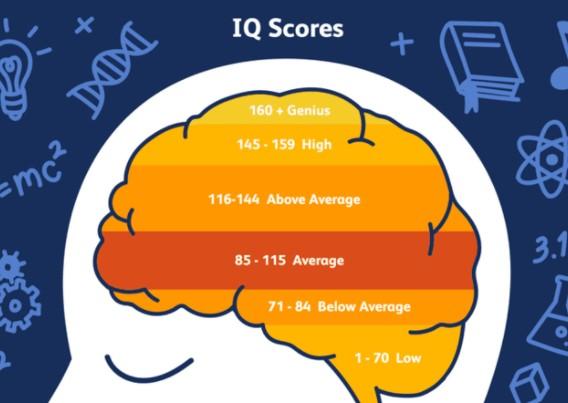 Что общего между психами и людьми с высоким  IQ?