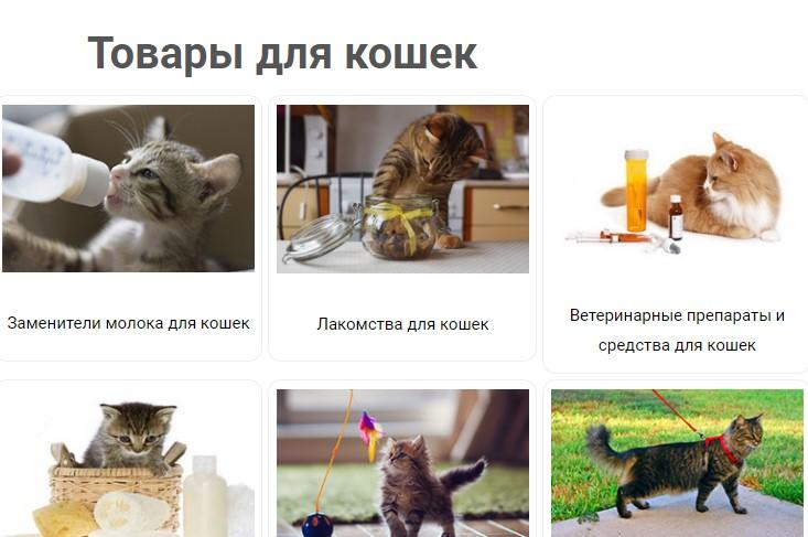 Как правильно кормить домашнюю кошку